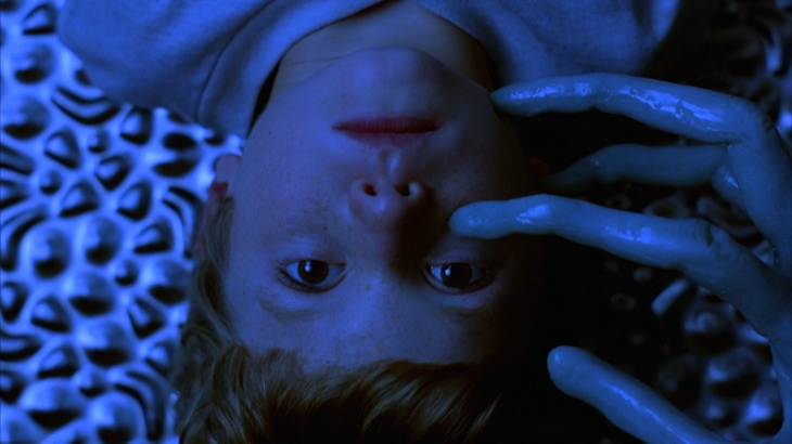 large_mysterious_skin_03_blu-ray_